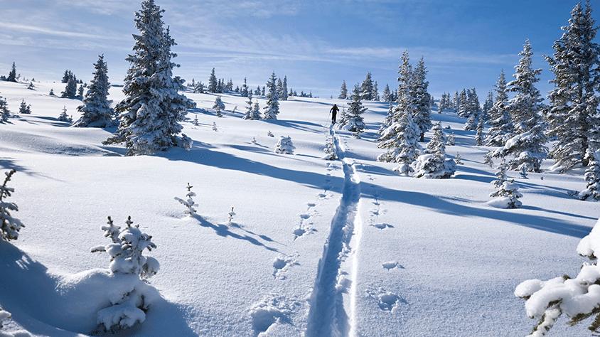 viaje Vail  Ski