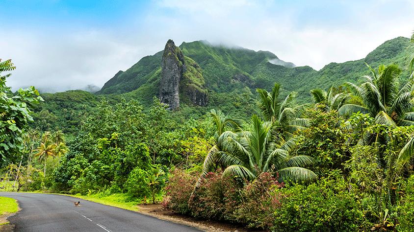 viaje Triangulo Raiatea