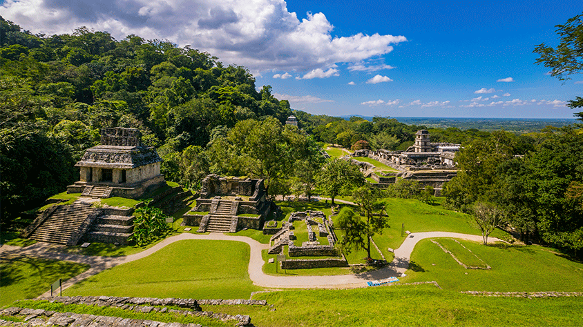 viaje Palenque Natural