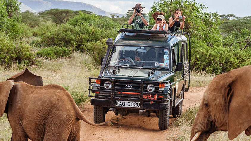 safari-kenia.png