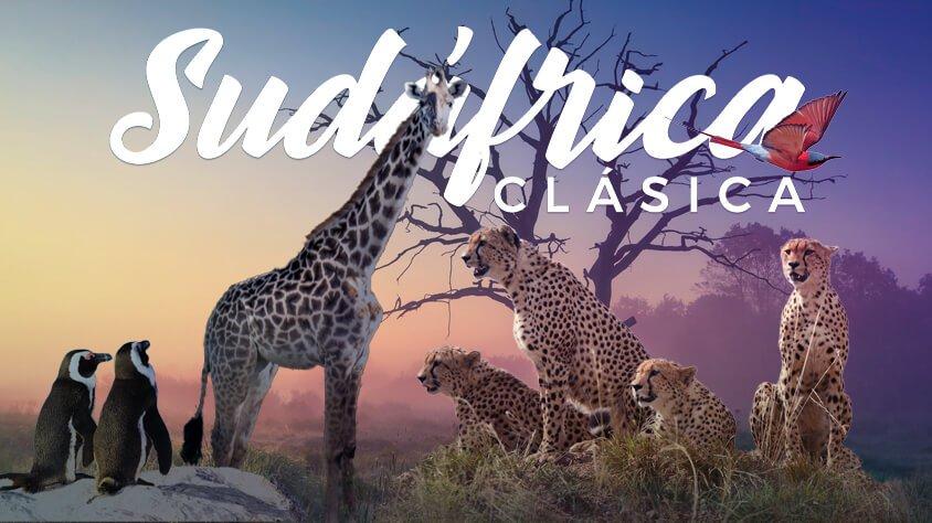 viaje Sudáfrica Clásica