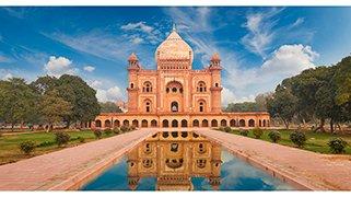 India - Templos y Tigres